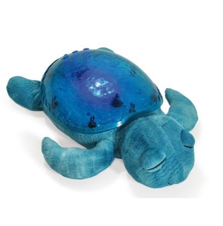 Tranquil Turtle, Aqua