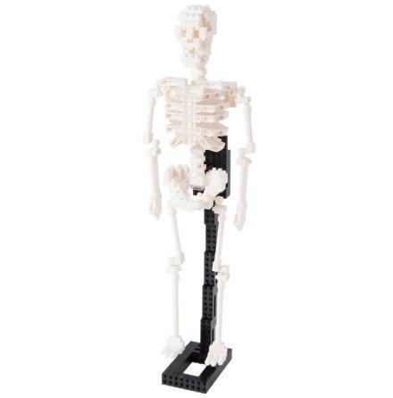 Nanoblock Mänskligt Skelett