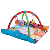 Taf Toys Newborn Gym