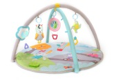 Taf Toys Musical Nature Gym