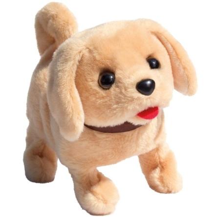 Playful Puppy Pal Labrador