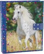 Horses Dreams Dagbok med kod & musik, Blå