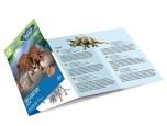 Dino Excavation Kit, Triceratops
