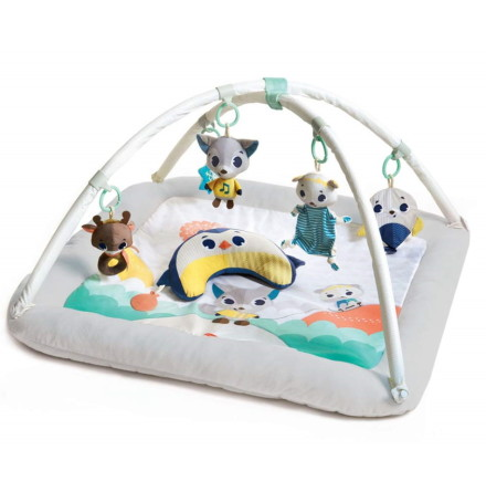Tiny Love Babygym, Polar Wonders