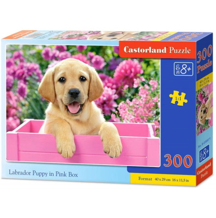 Labrador Puppy in Pink Box, Pussel, 300 bitar