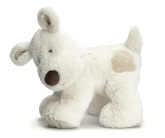 Teddy Cream Hund, Stor
