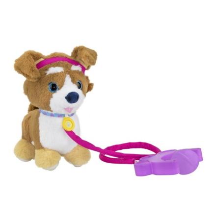 Sprint Corgi Puppy